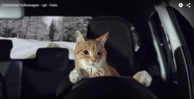 Publicidad de auto con gato al volante
